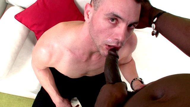 Sexually Aroused Brown-haired Fag Love Rod Tonguing Canu's Yam-sized Ebony Shaft On His Knees